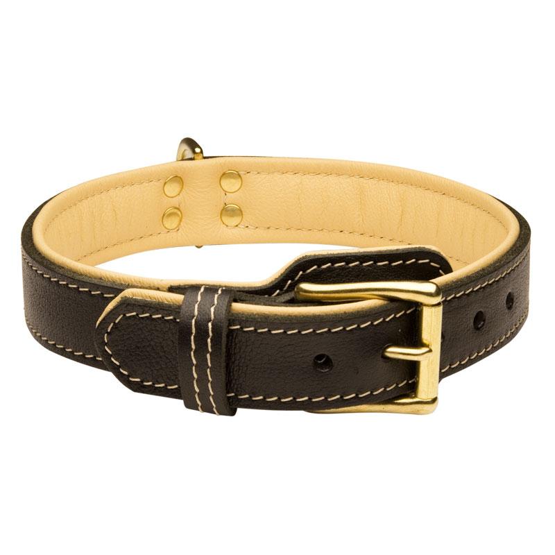 Collier chien au design original cadeau royal c443 - Collier pour chien original ...