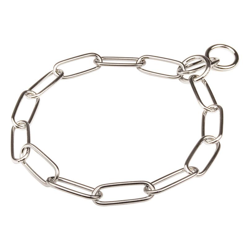 collier pour chien metal