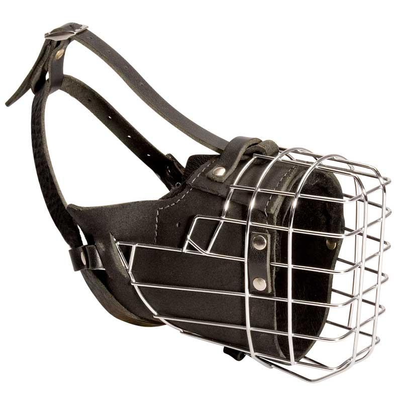 Muselière de frappe pour dressage de chien cane corso - M57