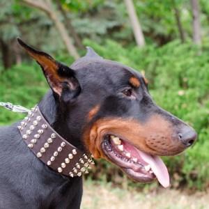 Canin Personnalisable Veste Chaude Vente Conducteur wYA7nq
